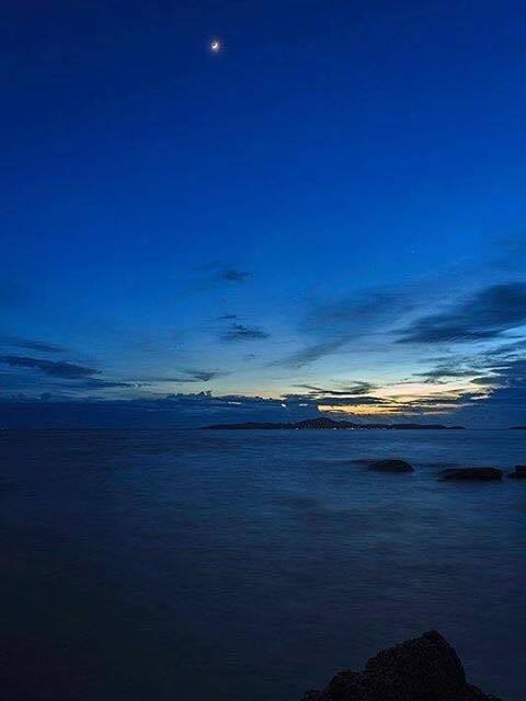 ชลิตากู๊ดวิว เกาะล้านพัทยา